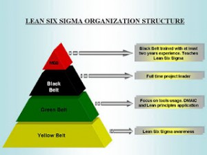 Lean_Six_Sigma_Structure
